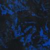 colorchip-Black_AtlanticBlue
