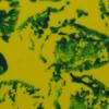 colorchip-Yellow_DarkGreen